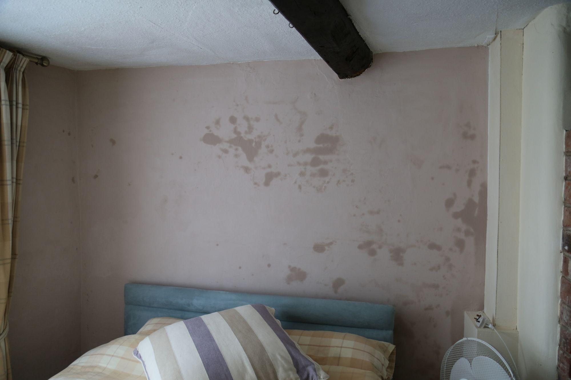 Salt damage in masonry walls