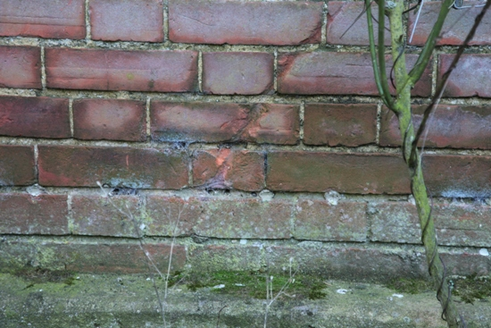 Managing damp problems in old buildings wet wall above injected damp proof course solutioingenieria Images