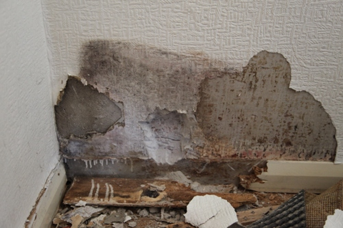 Condensation And Damp Trapped Into A Wall By Useless Renovating Plaster  Which Contains Cement